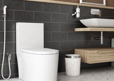 Bathroom brown_final